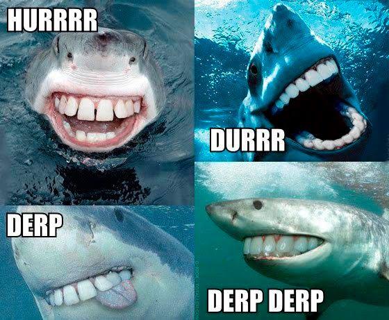 shark_derp_durr_hurr5.jpg