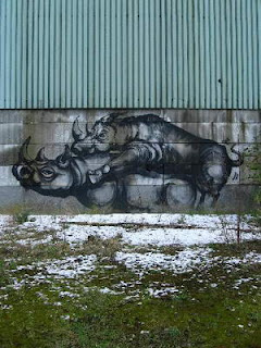 beautifull rhino graffiti