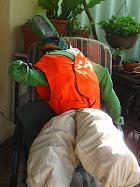 Mr Scareys siesta