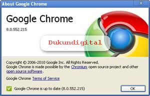 Download Google chrome 8