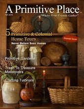 ~A Primitive Place Magazine~
