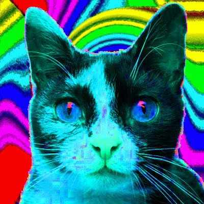 psychedelic wallpapers. psychedelic wallpapers. psychedelic wallpapers and