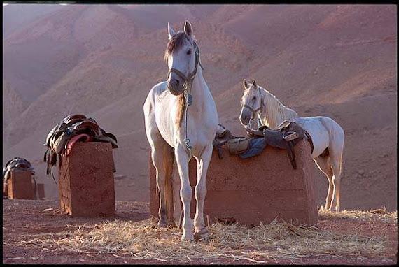 Au Maroc