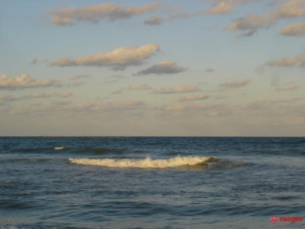 Marea!
