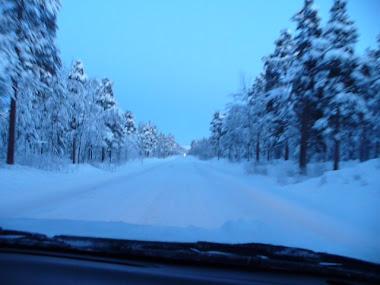 Drum albastru.