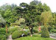 Un Jardin extraordinaire..