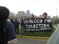 Adhesión a manifestación por la caza de ballenas (CDA)