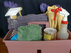 5th step: CHOOSE BEST HOUSECLEANING PLAN