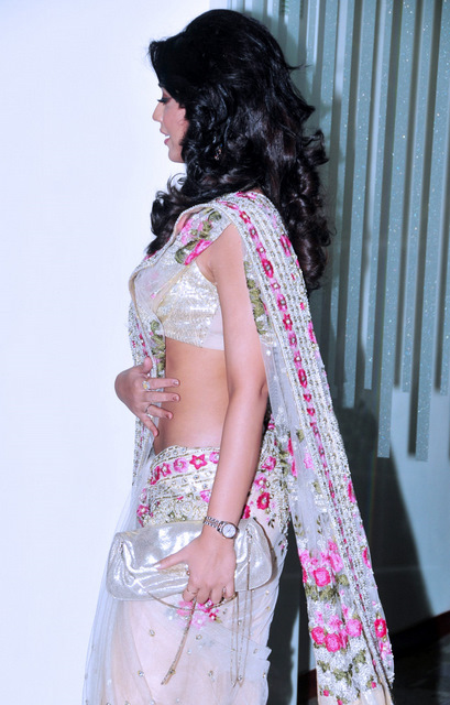 Shriya Saran  - Shriya Saran In Saree Hot Pics