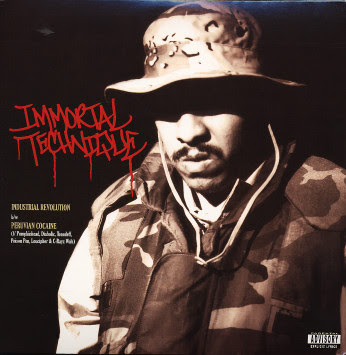 racism is immortal Immortal technique is an american / peruvian rapper and urban activist   poverty, religion, government, imperialism and institutional racism.