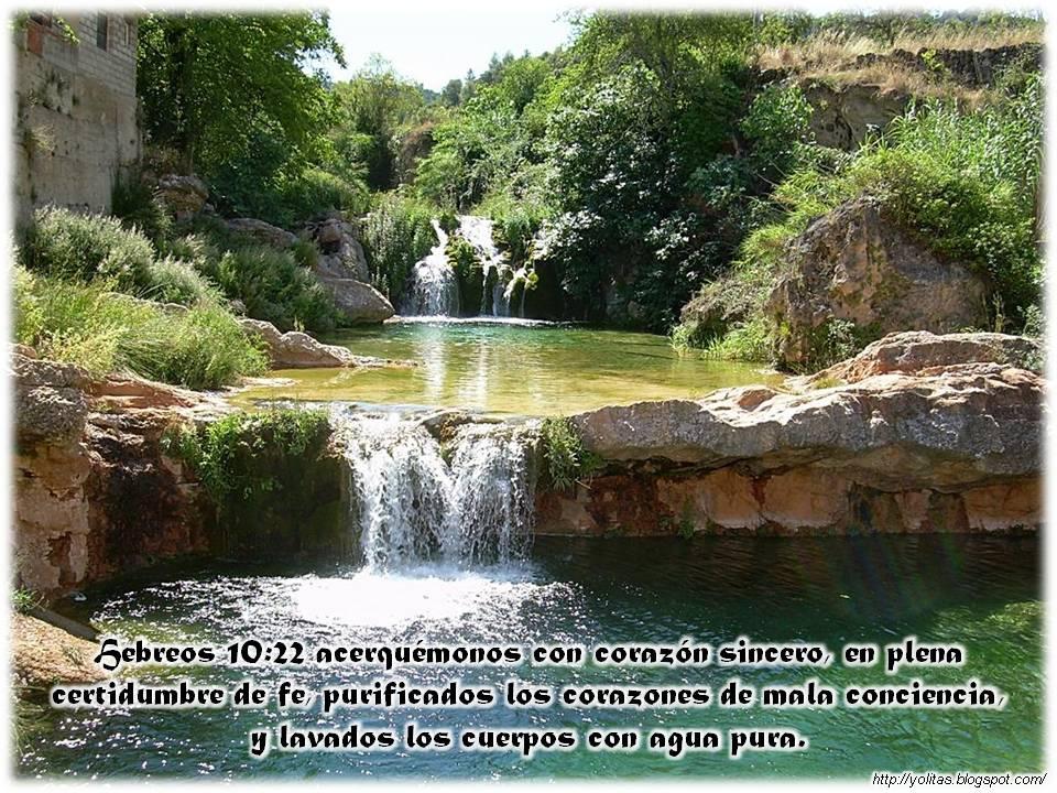 Naci para vencer paisajes con versiculos sobre el agua for Fotos cascadas