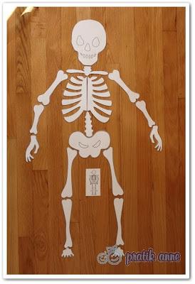 Kartondan iskeletin kemiklerini birleştirme
