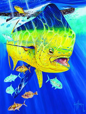 Lowcountry outdoors guy harvey magazine dolphin tagging for Harvey s paint and body