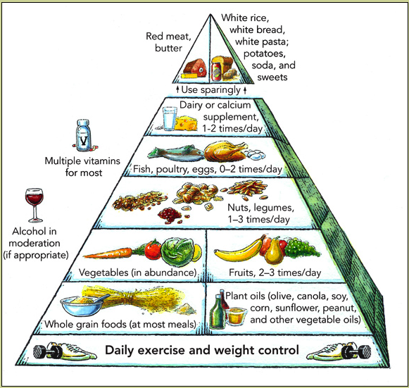 A Healthy Diet -- Food Pyramid | Solid Bloggers