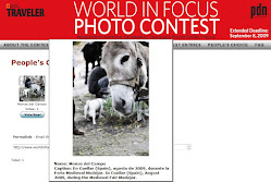WORLD IN FOCUS PHOTO CONTEST