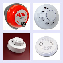 Site alarm and detection system
