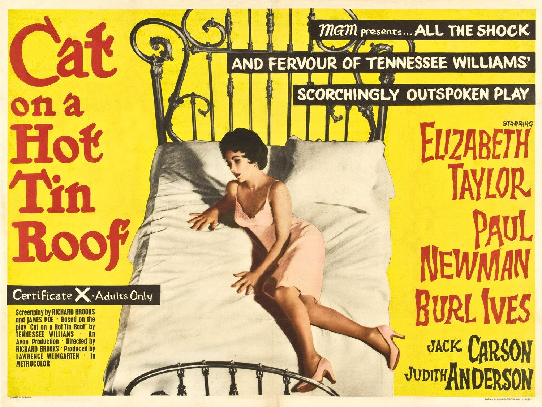 http://2.bp.blogspot.com/_VseO2IX-IUc/TIrqzgwrsQI/AAAAAAAADB0/qY1jK1OPPkQ/s1600/cat_on_a_hot_tin_roof.jpg