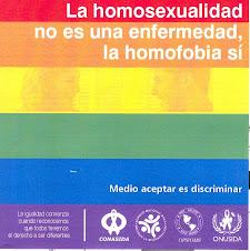 A polêmica do projeto de lei que criminaliza a homofobia!