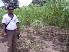 Pak Suaedi, Peneliti Pangan dari Nunukan