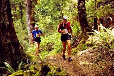 Kepler Challenge forest running