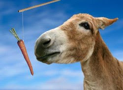 Motivate using carrot and stick - donkey against blue sky
