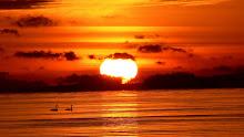 ^^من كانت الآخرة همُّه،جعل الله غناه في قلبه،و جمع له شمله،و أتته الدنيا و هي راغمة^^