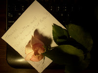 Along with this poem, my wife, Jeanette, found 12 roses each from a different saint, on the way to the computer.