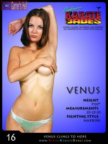 Bikini Karate Babes combines the basics of a fighting game with realistic ...