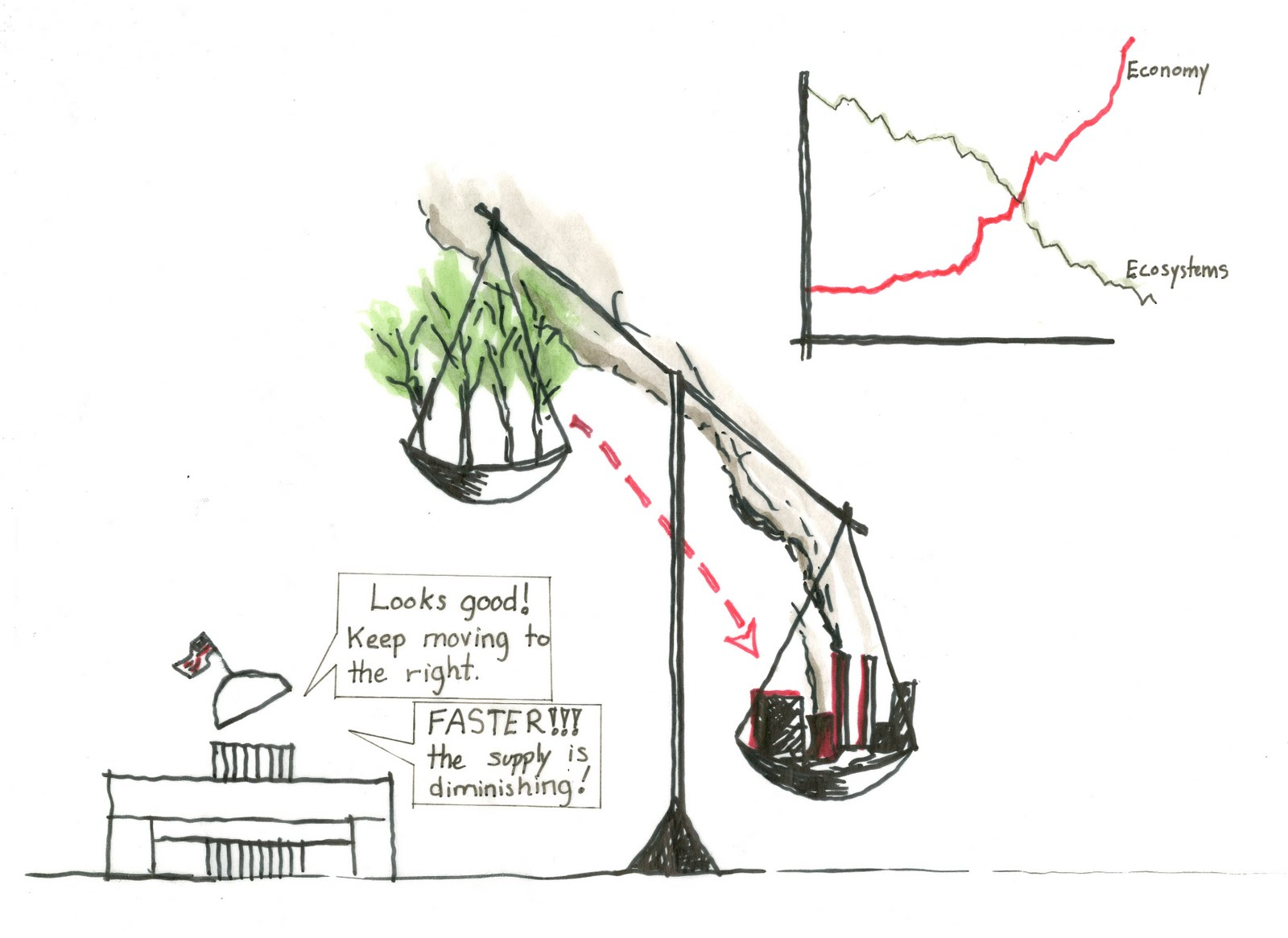 ecological imbalance essay