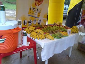 Mesa de frutas da melhor qualidade
