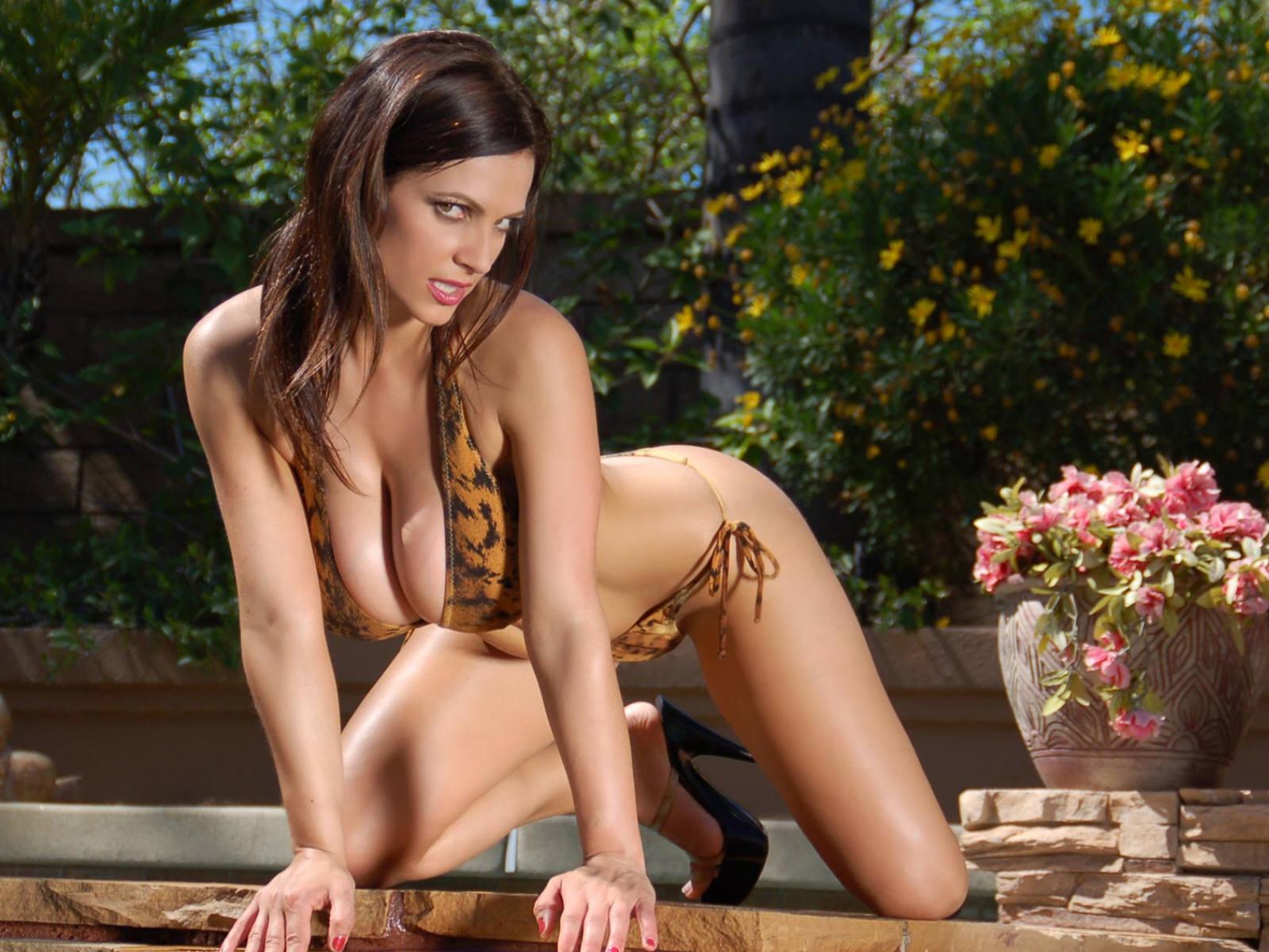 http://2.bp.blogspot.com/_W1ueYt1O3xs/SXT4Rt2VmGI/AAAAAAAAN1o/dLbdiBEZpXc/d/Denise+Milani+%283%29.jpg
