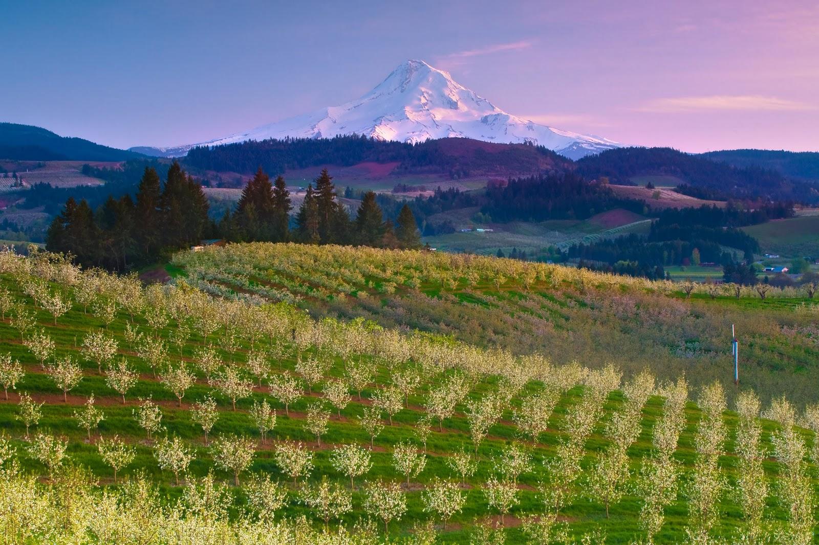 http://2.bp.blogspot.com/_W1ueYt1O3xs/TDr-saQoLNI/AAAAAAAAV0M/Ui33mON7IpM/s1600/Landscape+Wallpaper-2.jpg