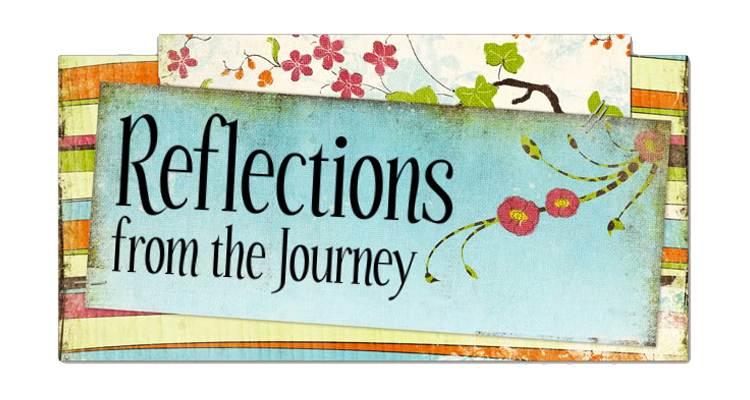 Reflections from the Journey