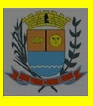 BRASÃO DE JARDIM DE PIRANHAS