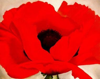 Red Poppy (1927)