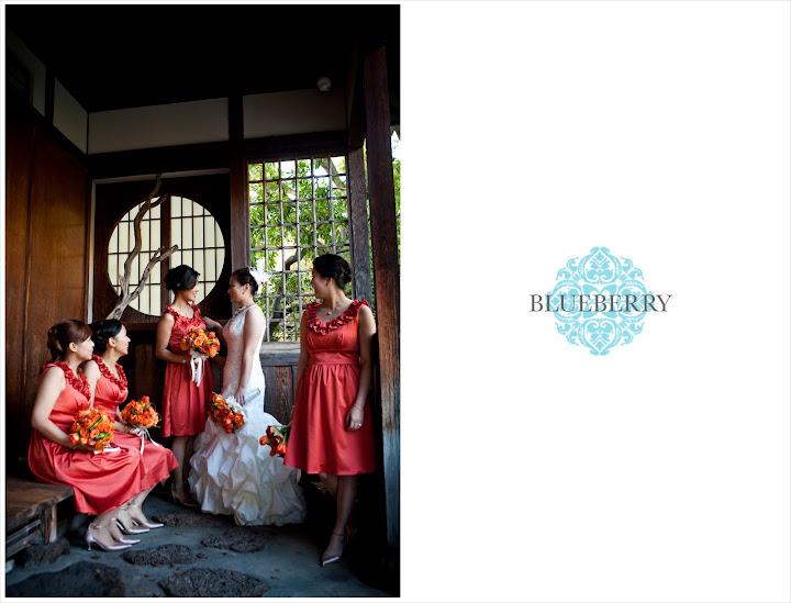 amazing berkeley wedding photographer