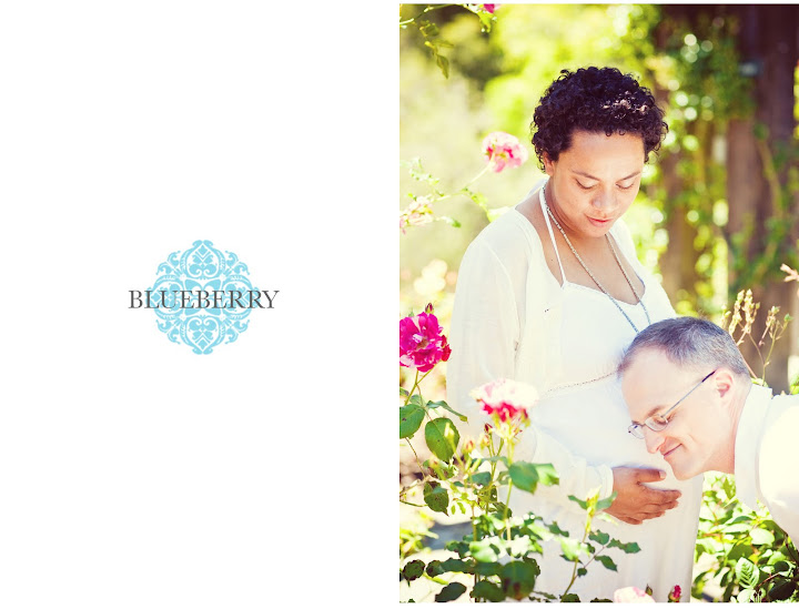 san mateo maternity photographer