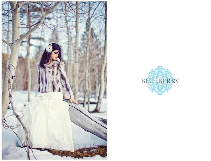 Snow Tahoe Reno Wedding shoot