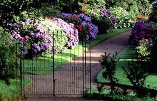 Lanhydrock front Gate