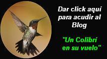 1er Blog Poético