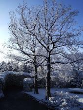 Snow in Spring!