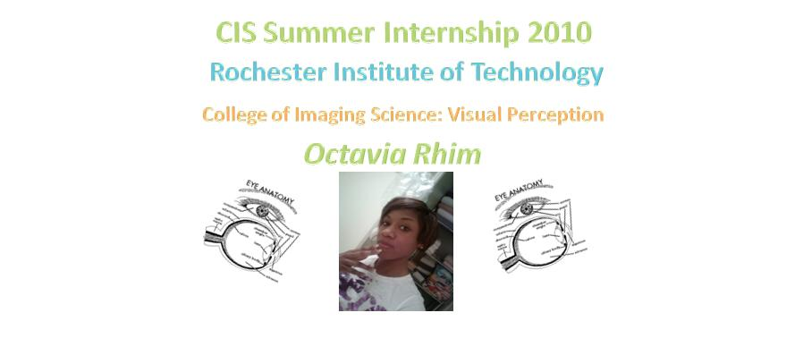 CIS Summer Internship 2010