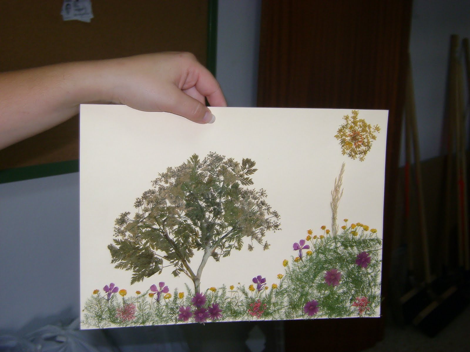 Imagenes de cuadros de flores secas - Adornos flores secas ...