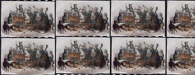 Orquesta de los gatos