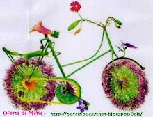 uma bicicleta para me orientar nos melhores e mais solidários caminhos