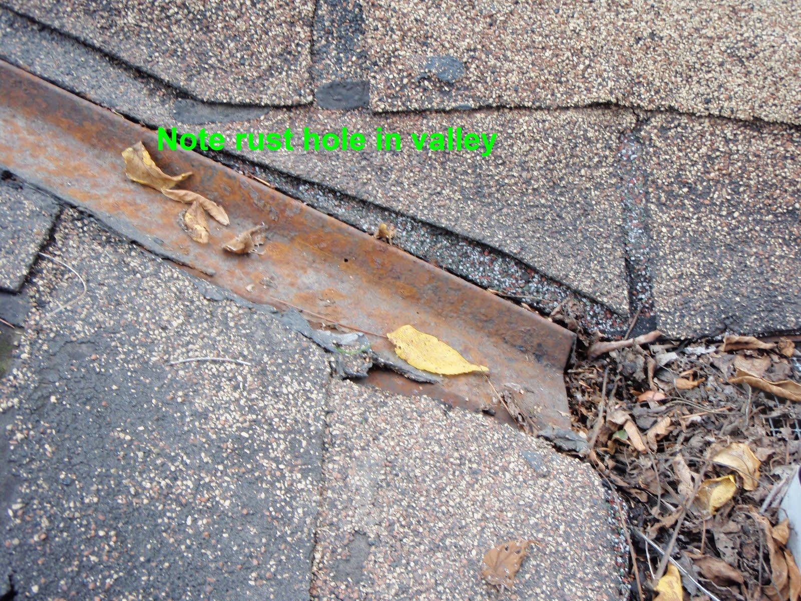 Asphalt Shingle Problems Why Does My Roof Leak