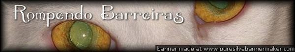 Rompendo Barreiras