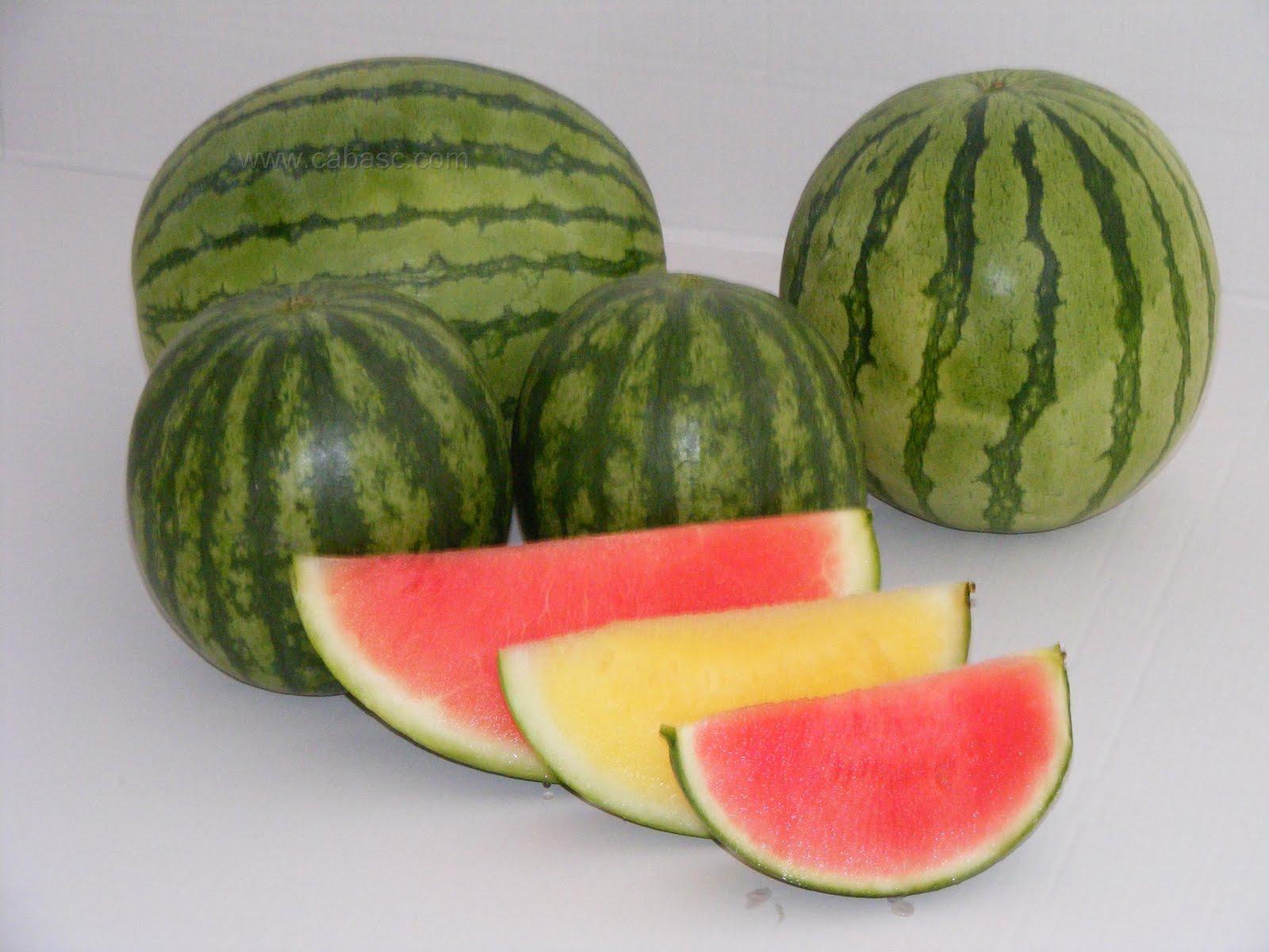 Todo sobre salud beneficios de los alimentos que contienen agua - Alimentos que contienen silicio ...
