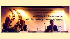 VP - conferencia internacional