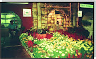 Bunga Hidroponik
